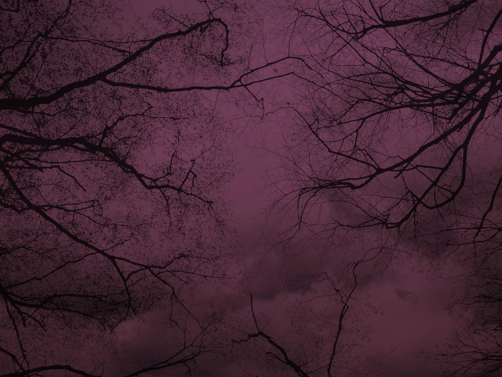 Purple Tree Background
